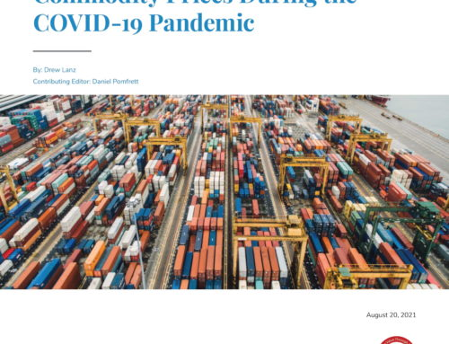 A Macroeconomic Analysis of  Commodity Prices During the  COVID-19 Pandemic
